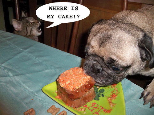 Birthday Cake For Dogs Meat ~ Doggy meatloaf birthday u ccakeu d for big th u lady and pups u an