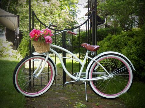 Bikes With Basket So I loaded my bike basket up
